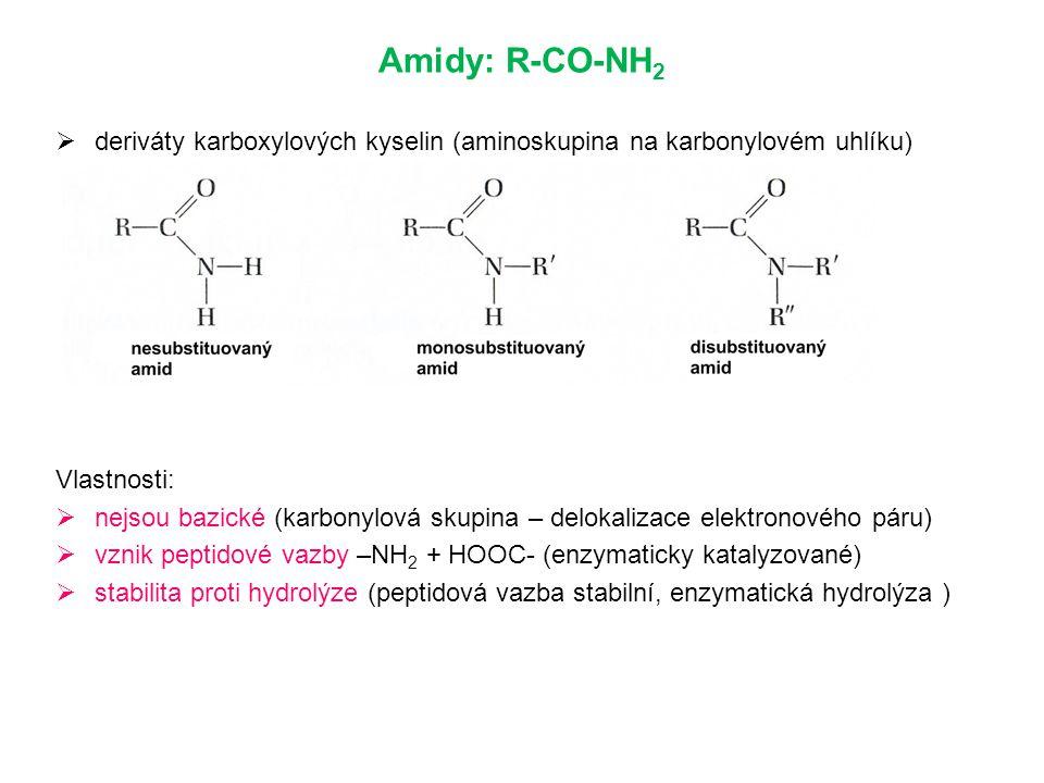 Amidy: R-CO-NH2 deriváty karboxylových kyselin (aminoskupina na karbonylovém uhlíku) Vlastnosti: