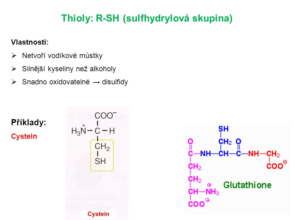 Thioly: R-SH (sulfhydrylová skupina)