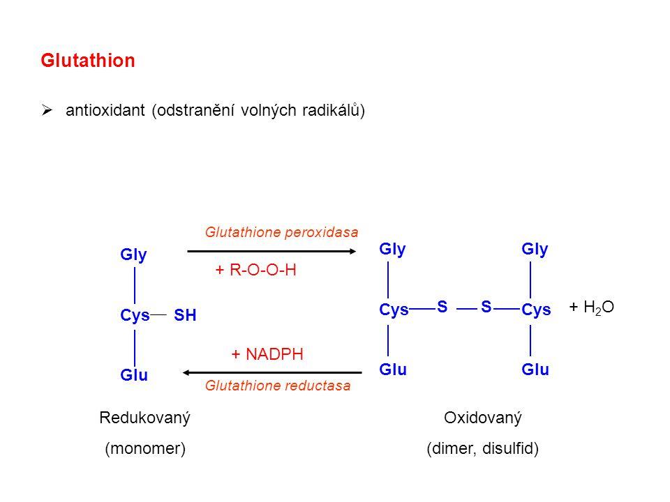 Glutathion antioxidant (odstranění volných radikálů) Gly Cys Glu Gly