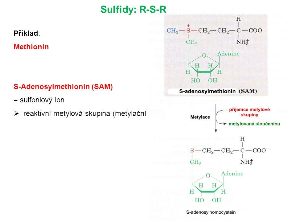 Sulfidy: R-S-R Příklad: Methionin S-Adenosylmethionin (SAM)