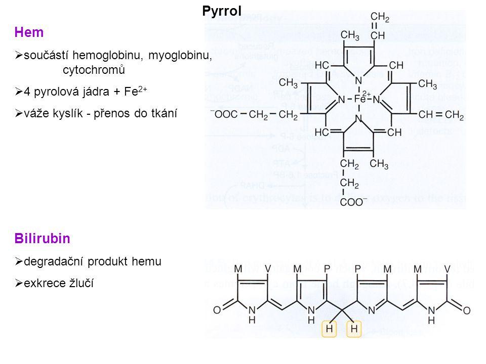 Pyrrol Hem Bilirubin součástí hemoglobinu, myoglobinu, cytochromů