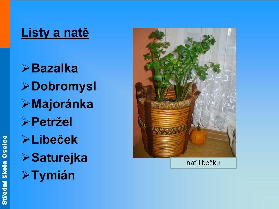 Listy a natě Bazalka Dobromysl Majoránka Petržel Libeček Saturejka