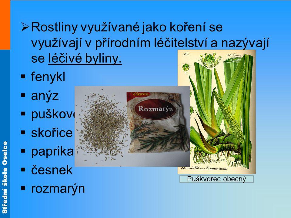 Rostliny využívané jako koření se využívají v přírodním léčitelství a nazývají se léčivé byliny.