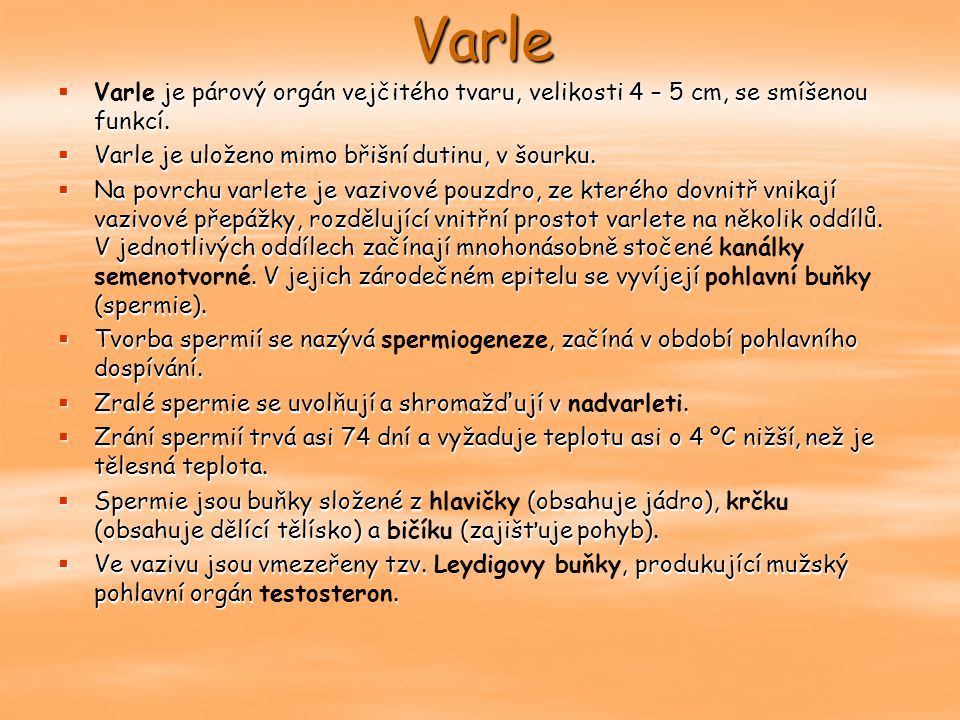 Varle Varle je párový orgán vejčitého tvaru, velikosti 4 – 5 cm, se smíšenou funkcí. Varle je uloženo mimo břišní dutinu, v šourku.