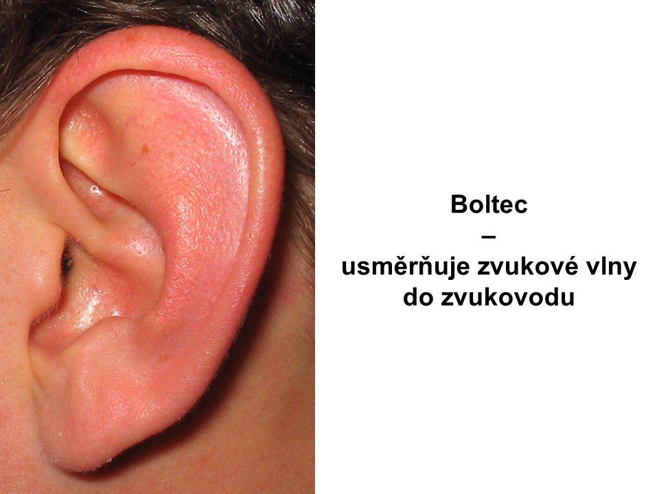 Boltec – usměrňuje zvukové vlny do zvukovodu