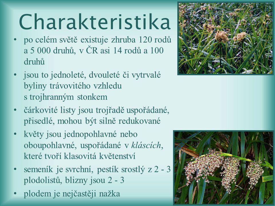Charakteristika po celém světě existuje zhruba 120 rodů a 5 000 druhů, v ČR asi 14 rodů a 100 druhů.