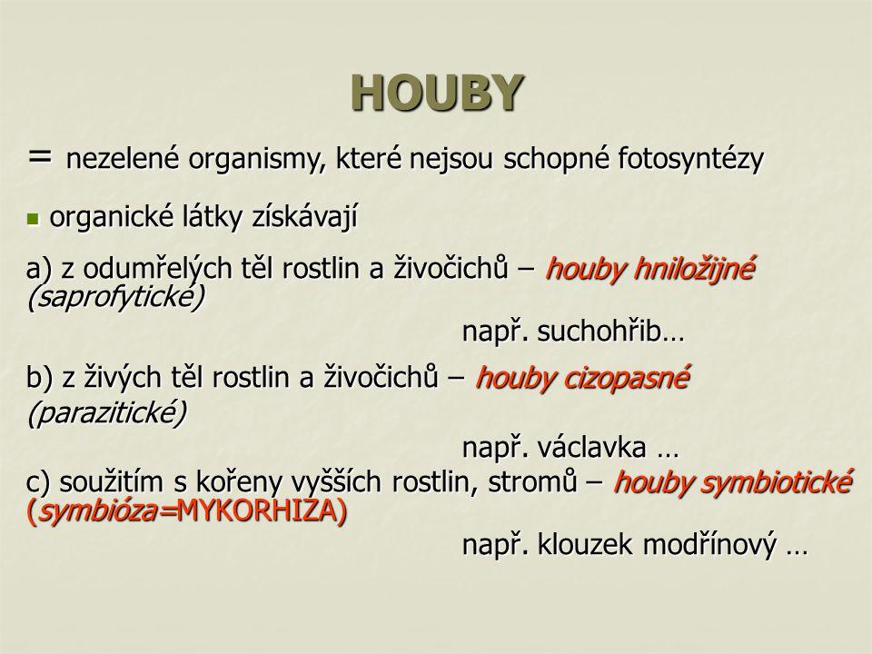 HOUBY = nezelené organismy, které nejsou schopné fotosyntézy