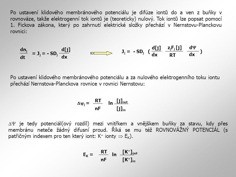 Po ustavení klidového membránového potenciálu je difúze iontů do a ven z buňky v rovnováze, takže elektrogenní tok iontů je (teoreticky) nulový. Tok iontů lze popsat pomocí 1. Fickova zákona, který po zahrnutí elektrické složky přechází v Nernstovu-Planckovu rovnici: