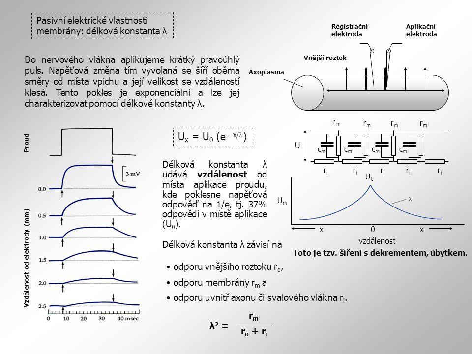 Pasivní elektrické vlastnosti membrány: délková konstanta λ