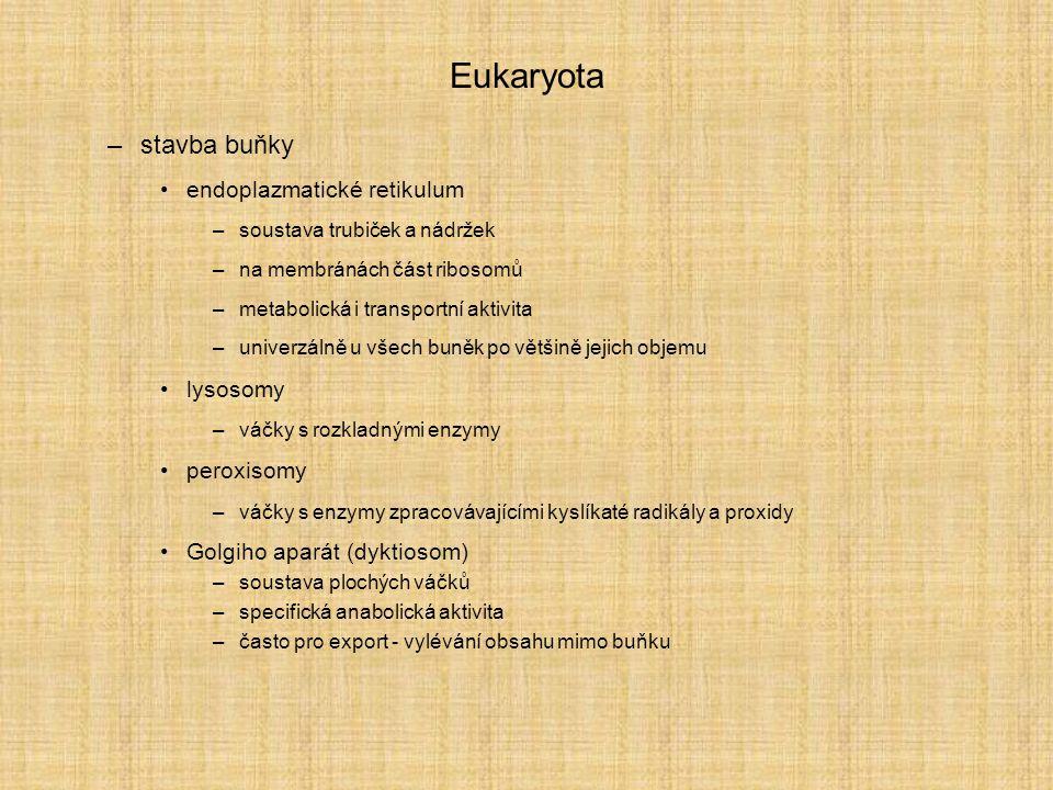 Eukaryota stavba buňky endoplazmatické retikulum lysosomy peroxisomy