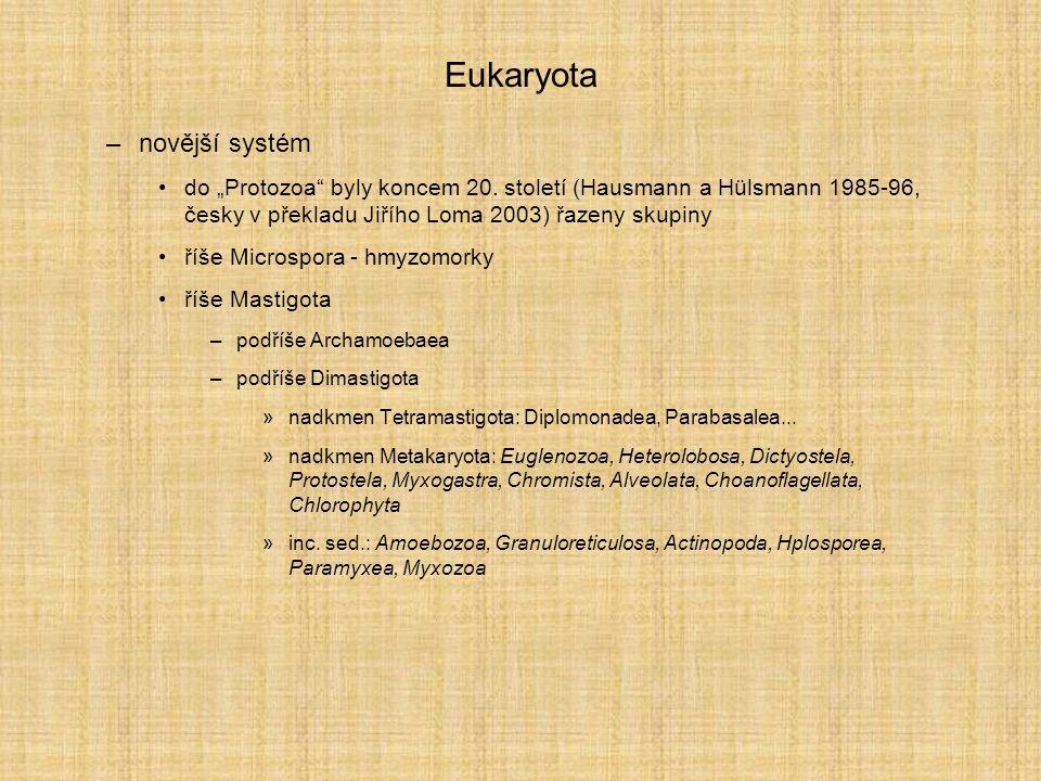 Eukaryota novější systém