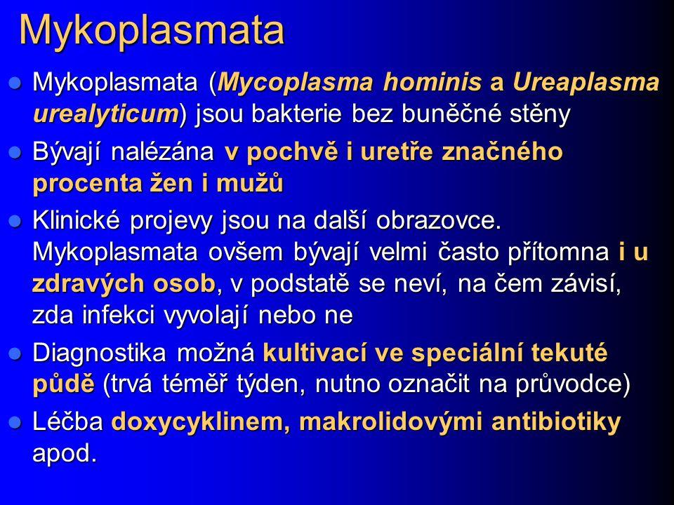 Mykoplasmata Mykoplasmata (Mycoplasma hominis a Ureaplasma urealyticum) jsou bakterie bez buněčné stěny.