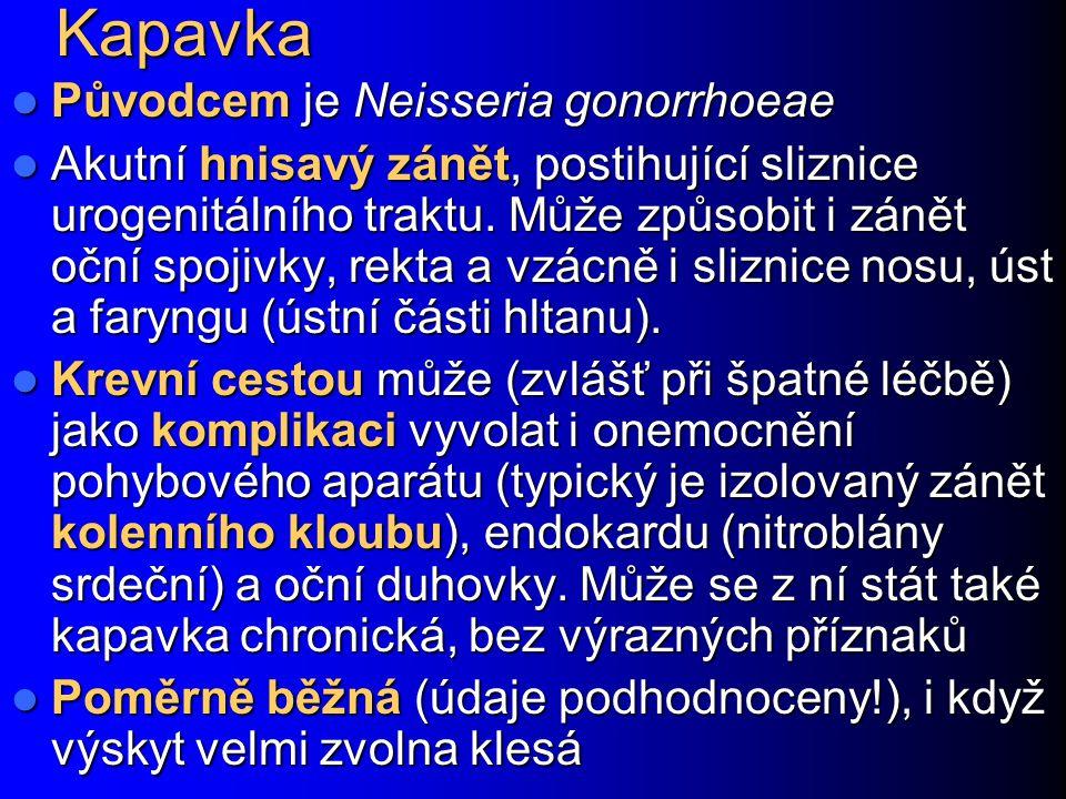 Kapavka Původcem je Neisseria gonorrhoeae