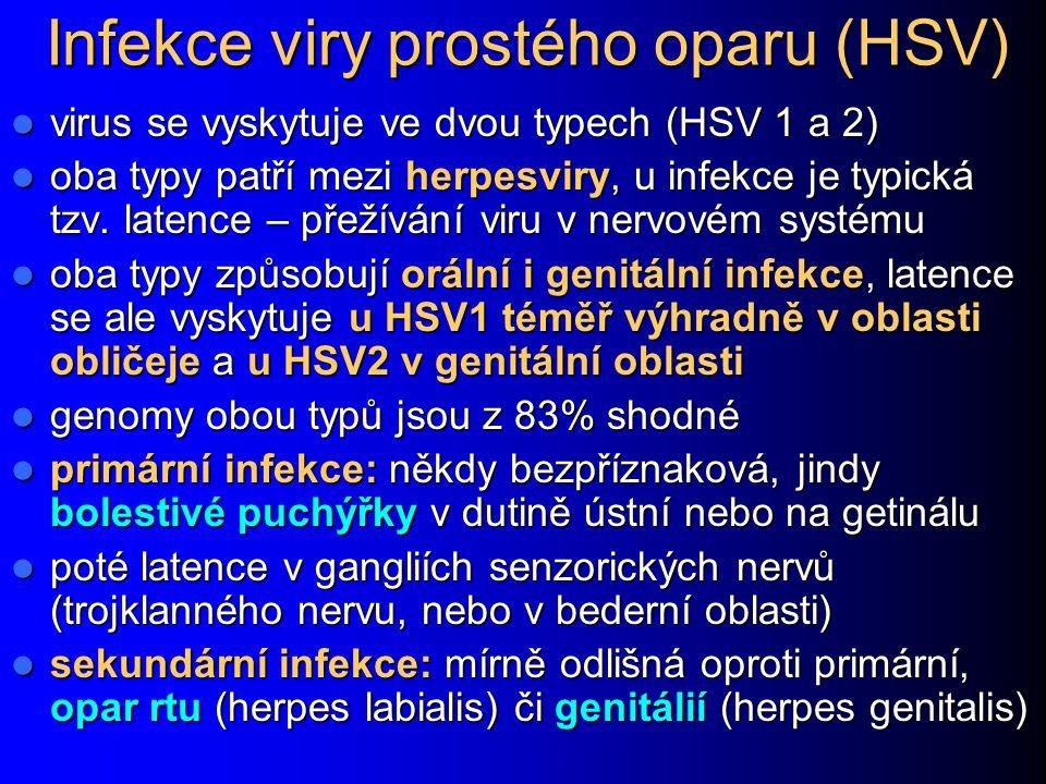 Infekce viry prostého oparu (HSV)