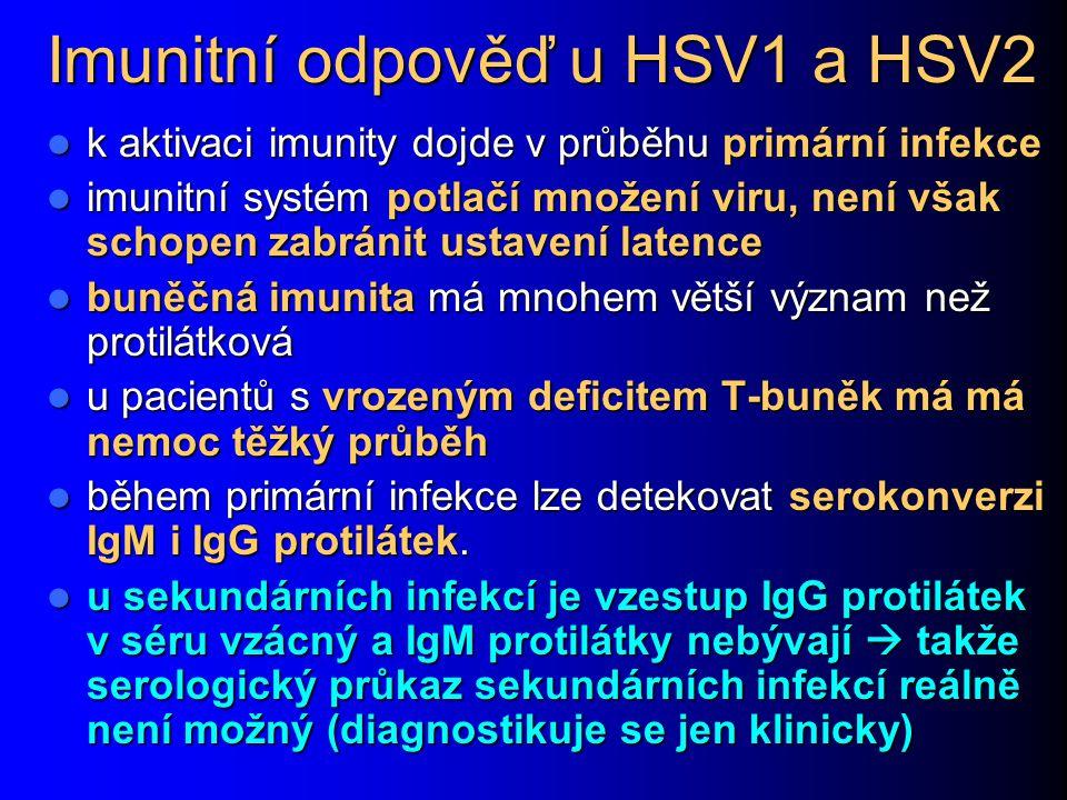 Imunitní odpověď u HSV1 a HSV2