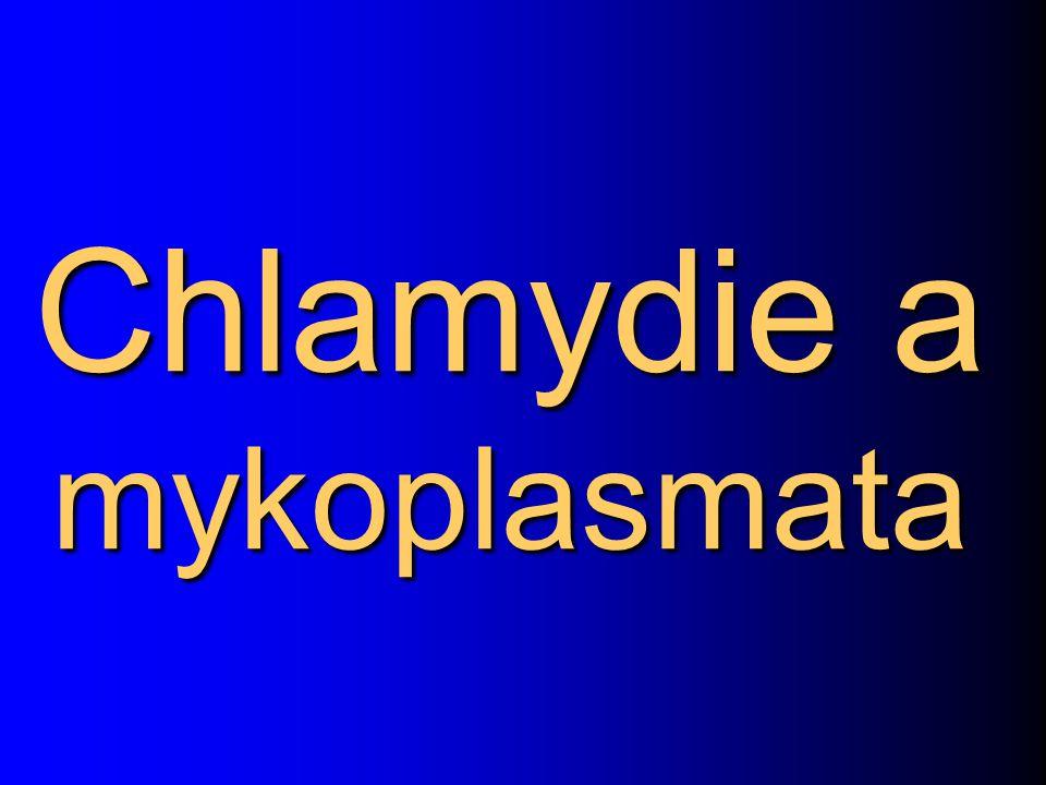 Chlamydie a mykoplasmata