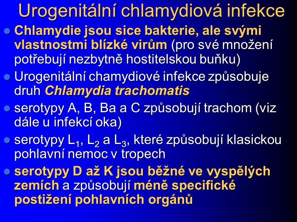 Urogenitální chlamydiová infekce
