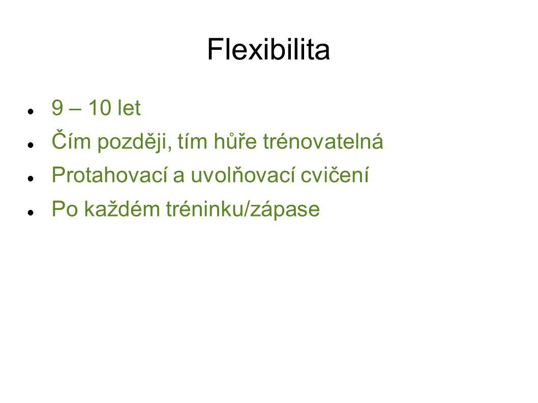Flexibilita 9 – 10 let Čím později, tím hůře trénovatelná