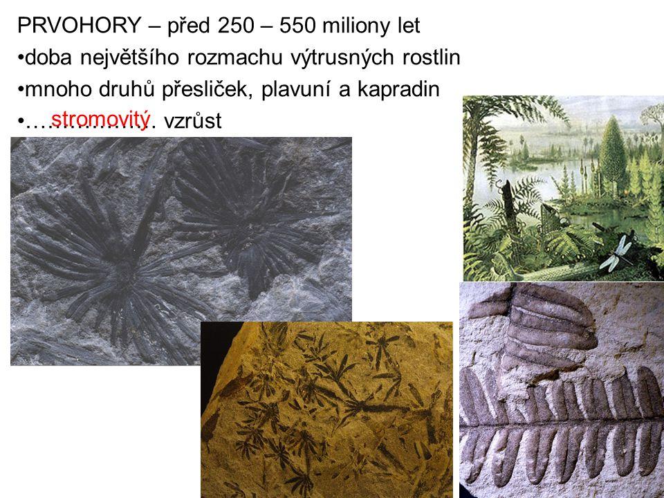 PRVOHORY – před 250 – 550 miliony let