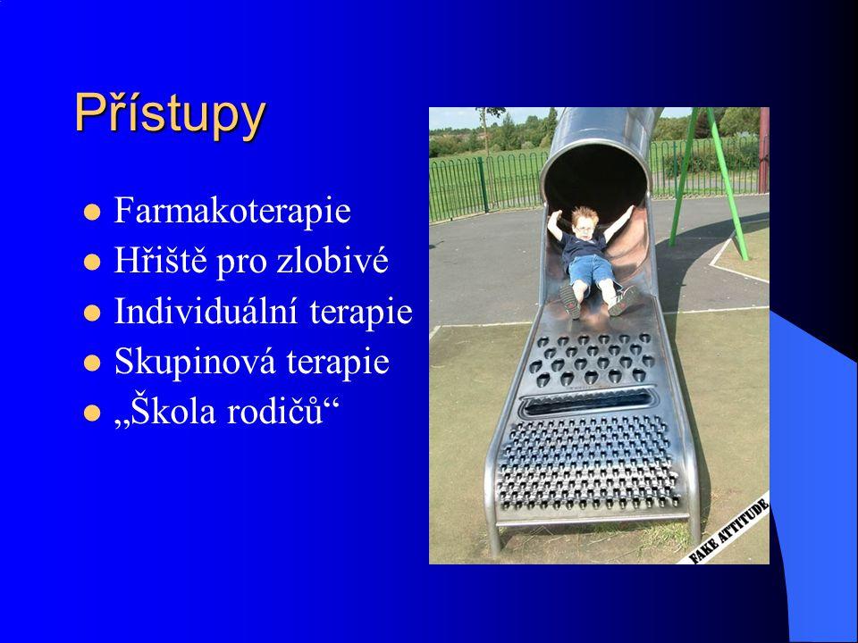 Přístupy Farmakoterapie Hřiště pro zlobivé Individuální terapie