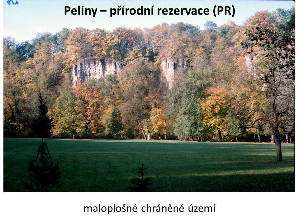 Peliny – přírodní rezervace (PR)