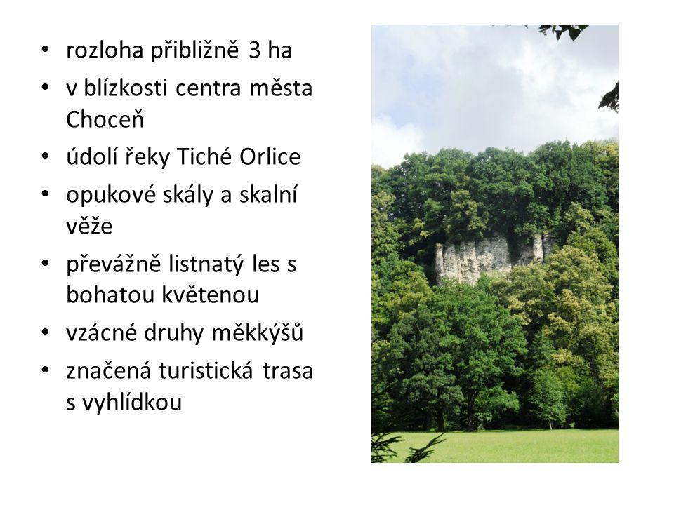 rozloha přibližně 3 ha v blízkosti centra města Choceň. údolí řeky Tiché Orlice. opukové skály a skalní věže.
