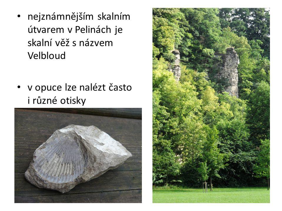nejznámnějším skalním útvarem v Pelinách je skalní věž s názvem Velbloud