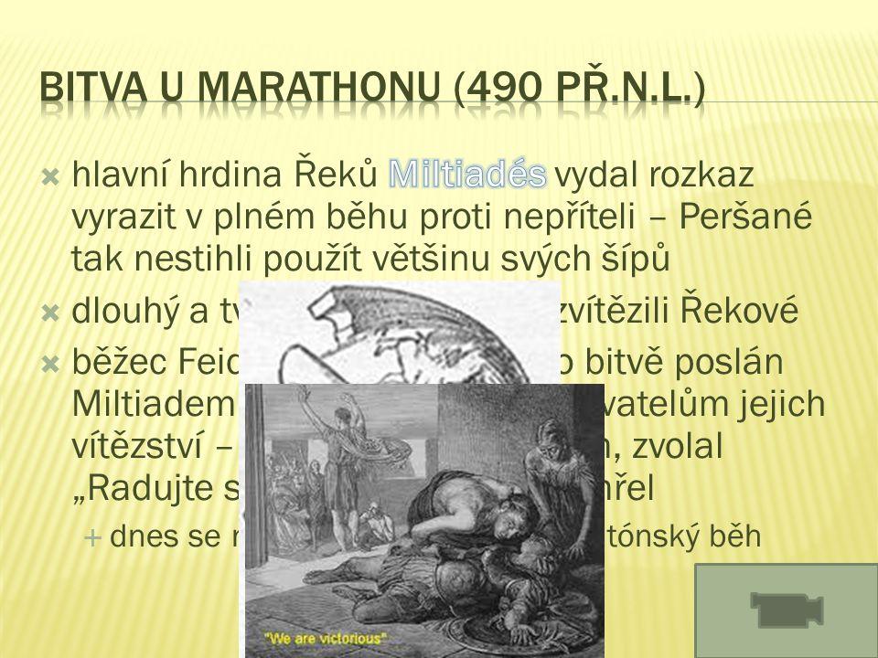Bitva u Marathonu (490 př.n.l.)