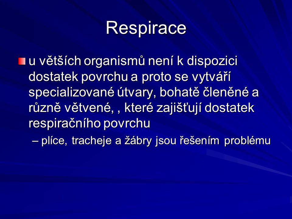 Respirace
