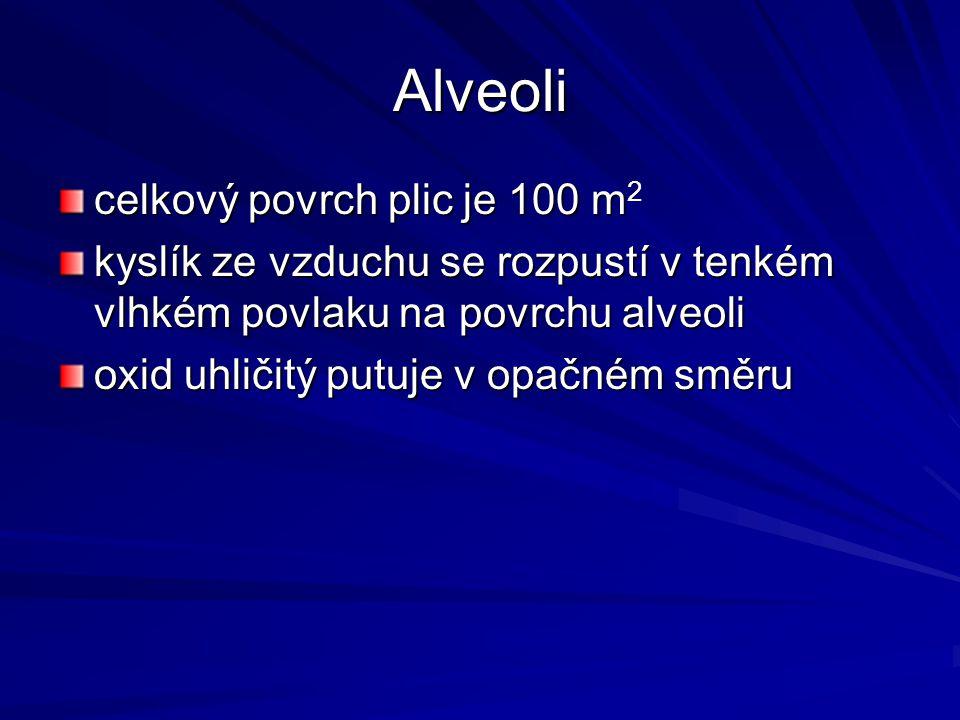 Alveoli celkový povrch plic je 100 m2
