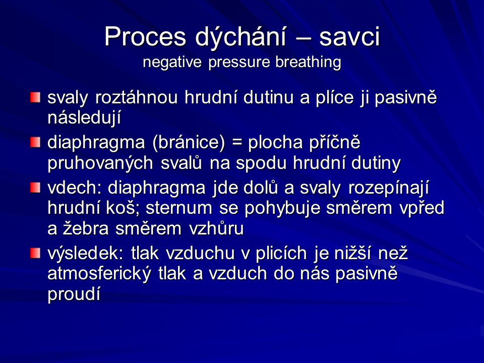 Proces dýchání – savci negative pressure breathing