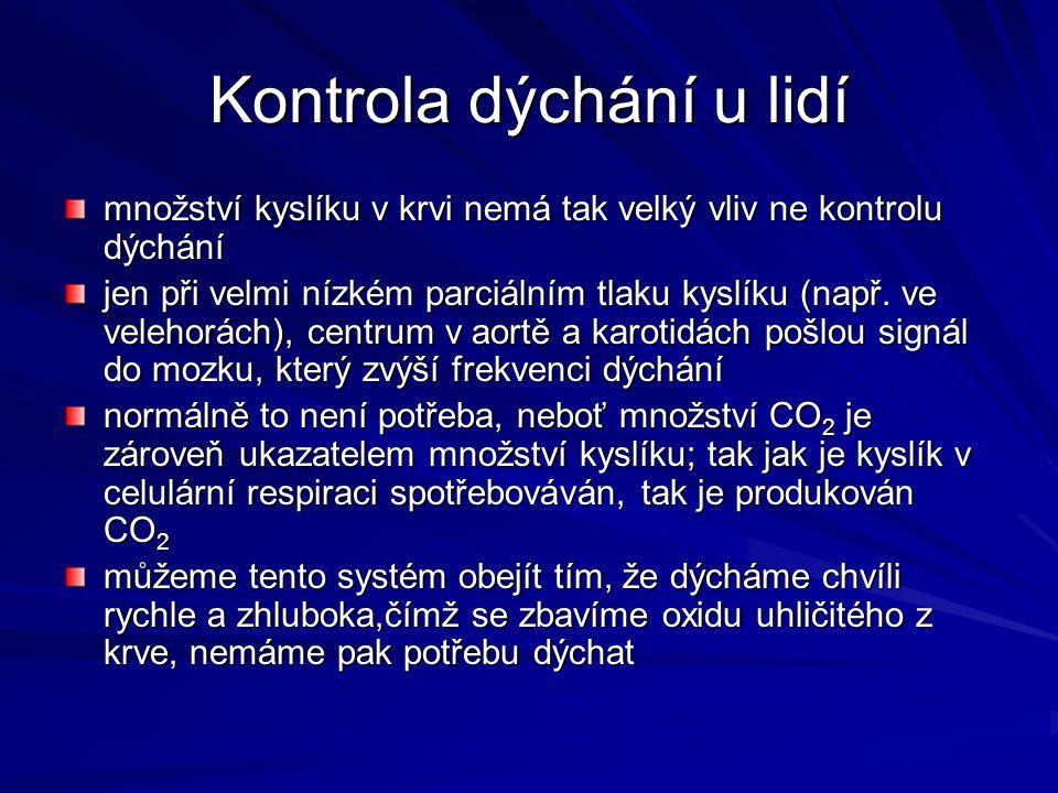 Kontrola dýchání u lidí