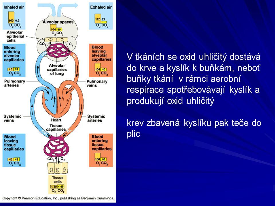 V tkáních se oxid uhličitý dostává do krve a kyslík k buňkám, neboť buňky tkání v rámci aerobní respirace spotřebovávají kyslík a produkují oxid uhličitý