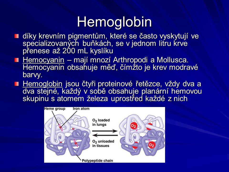 Hemoglobin díky krevním pigmentům, které se často vyskytují ve specializovaných buňkách, se v jednom litru krve přenese až 200 mL kyslíku.