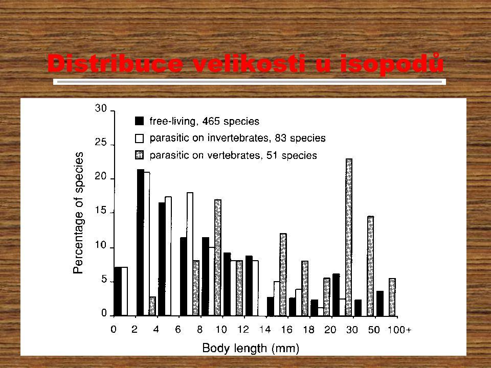 Distribuce velikosti u isopodů