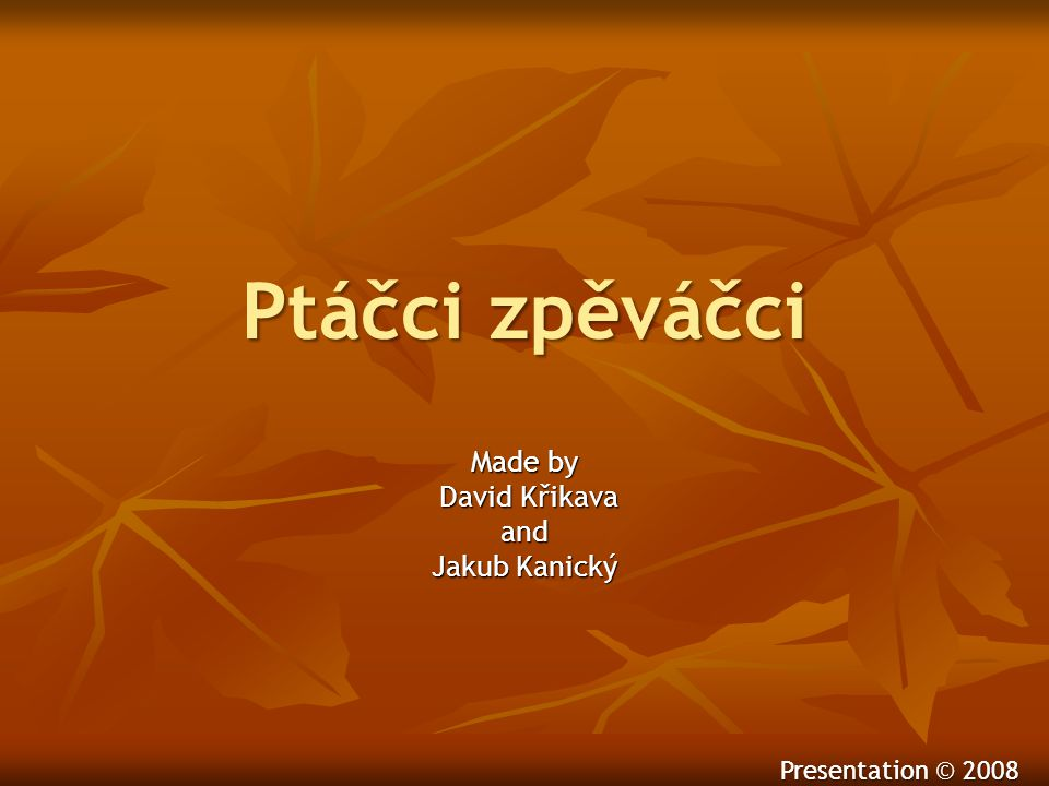 Made by David Křikava and Jakub Kanický