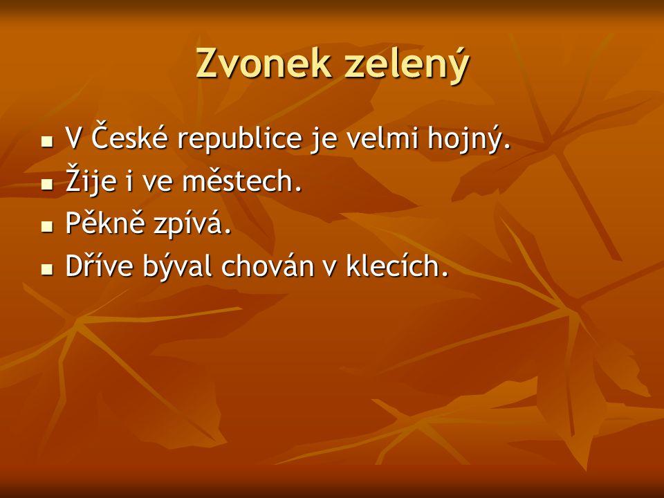 Zvonek zelený V České republice je velmi hojný. Žije i ve městech.
