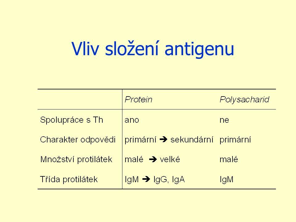 Vliv složení antigenu