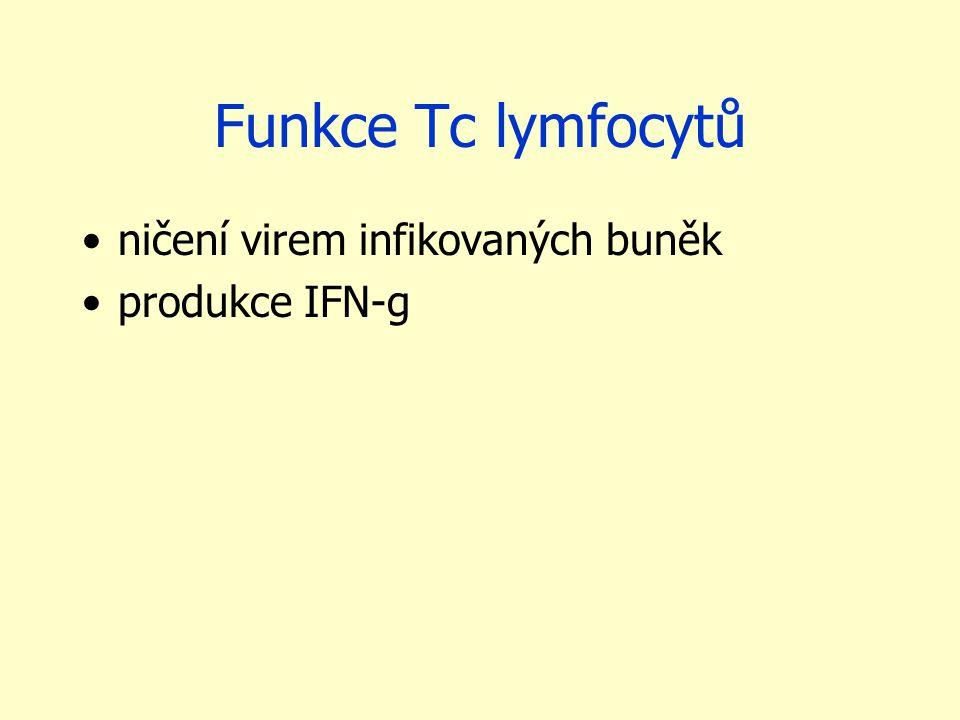Funkce Tc lymfocytů ničení virem infikovaných buněk produkce IFN-g