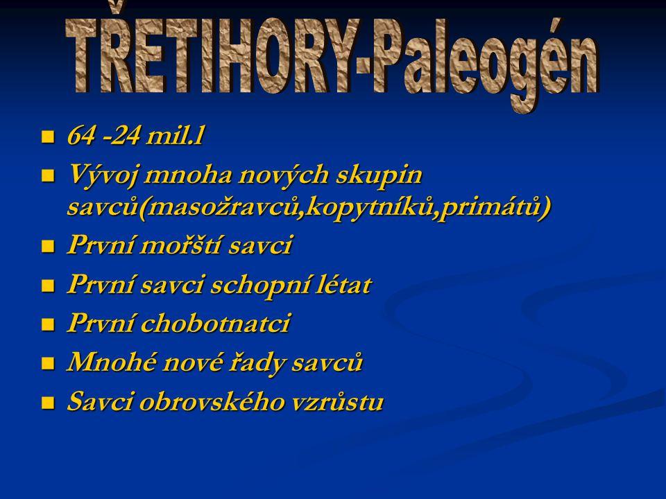 TŘETIHORY-Paleogén 64 -24 mil.l