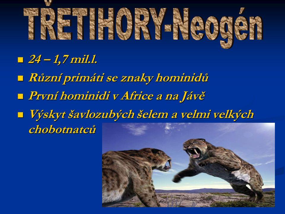 TŘETIHORY-Neogén 24 – 1,7 mil.l. Různí primáti se znaky hominidů