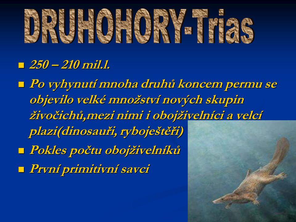 DRUHOHORY-Trias 250 – 210 mil.l.