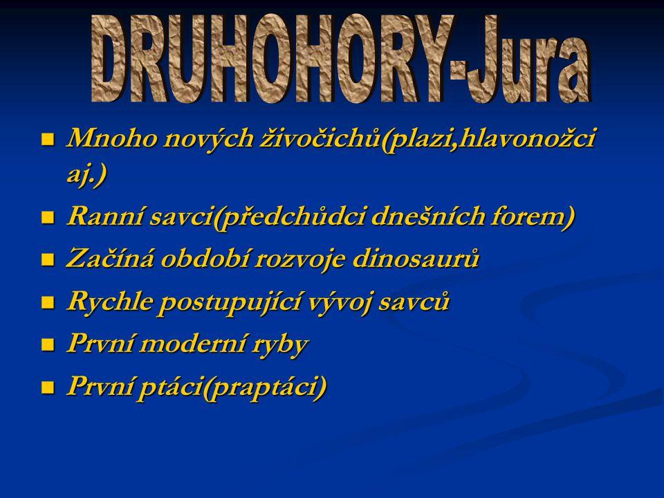 DRUHOHORY-Jura Mnoho nových živočichů(plazi,hlavonožci aj.)