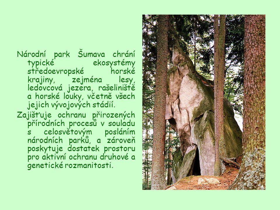 Národní park Šumava chrání typické ekosystémy středoevropské horské krajiny, zejména lesy, ledovcová jezera, rašeliniště a horské louky, včetně všech jejich vývojových stádií.