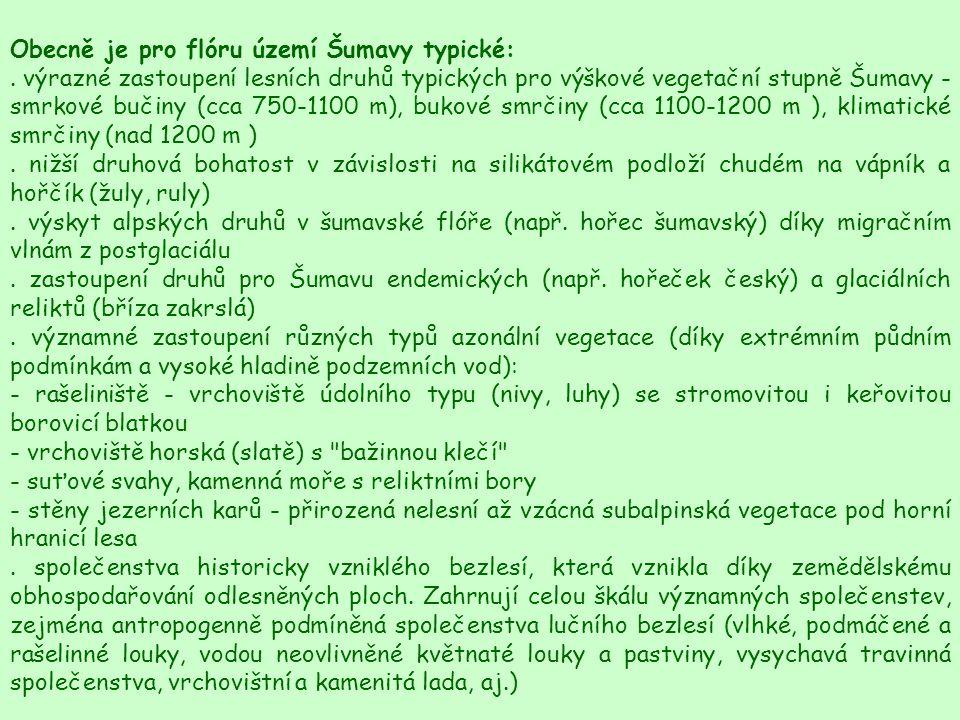 Obecně je pro flóru území Šumavy typické: