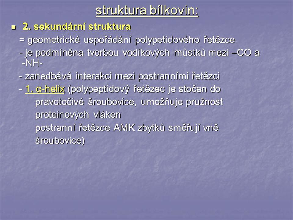 struktura bílkovin: 2. sekundární struktura