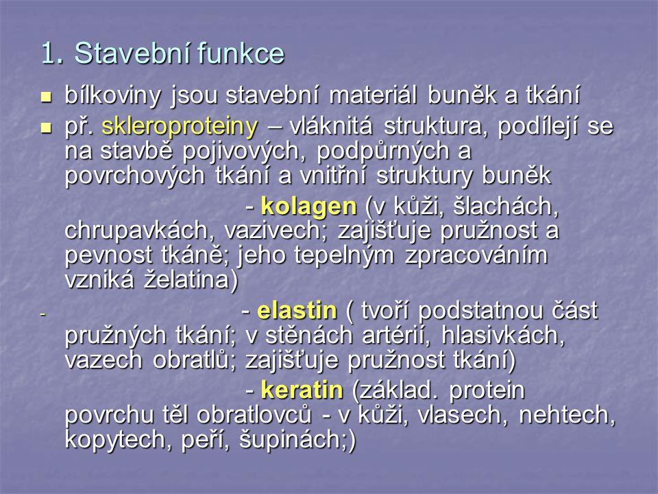 1. Stavební funkce bílkoviny jsou stavební materiál buněk a tkání