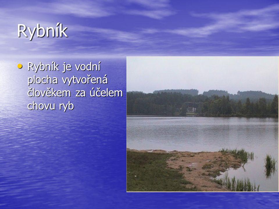 Rybník Rybník je vodní plocha vytvořená člověkem za účelem chovu ryb