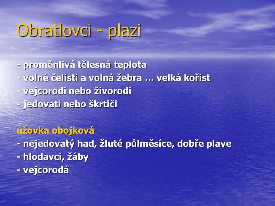 Obratlovci - plazi - proměnlivá tělesná teplota