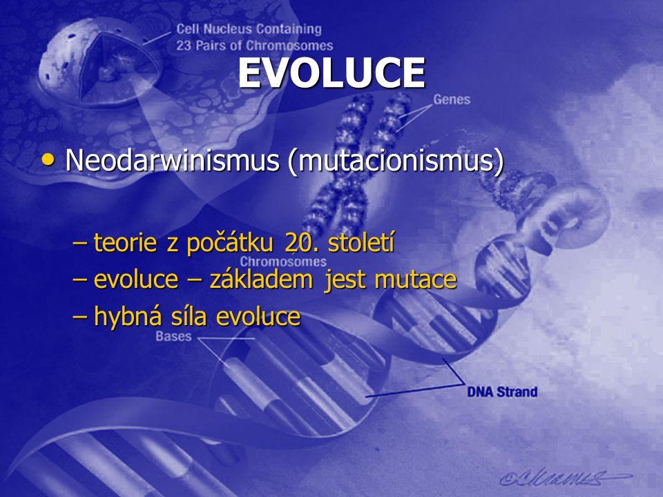 EVOLUCE Neodarwinismus (mutacionismus) teorie z počátku 20. století